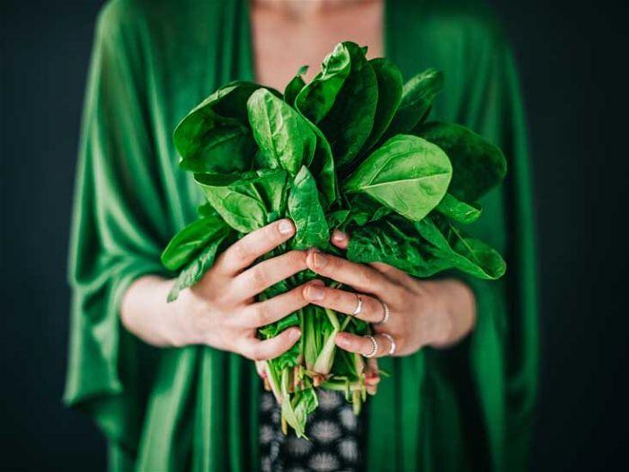 Lợi ích của rau chân vịt với sức khỏe con người