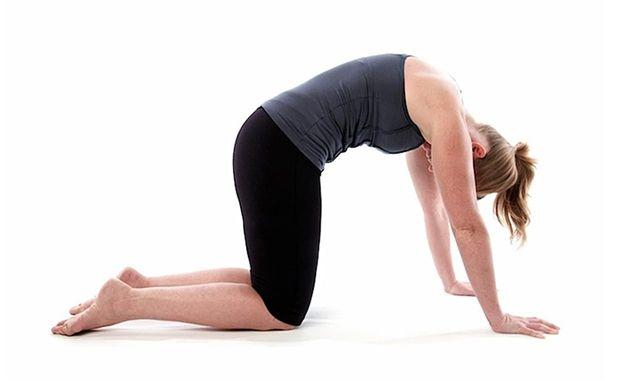 Tư thế yoga con mèo – Marjariasana