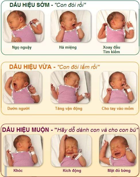Dấu hiệu cho thấy bé cần bú mẹ