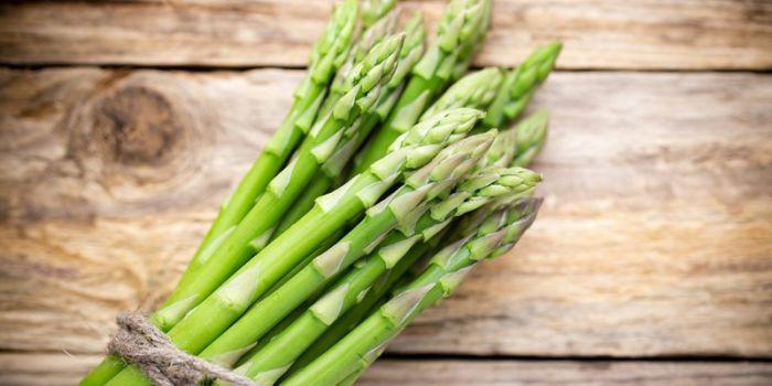 vitamin k trong măng tây